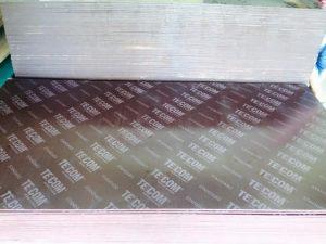 Thông số kỹ thuật ván ép phủ phim Tekcom tại Phụ Kiện Và Cốp Pha Việt rất đa dạng